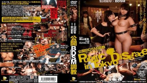 Dream Ticket PDD-003 Asada Yoshinori, Yokoyama Natsuki Public BDSM Training Affiliation